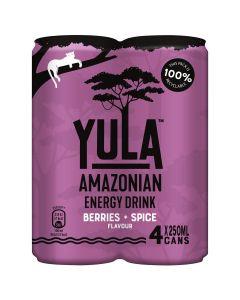 Yula Açai Berry + Spice 4 x 25cl