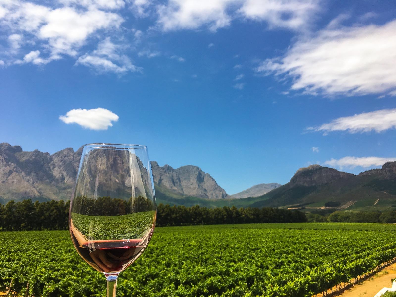 Prik en Tik - Wijnstreken - Herkomst van wijn proeven