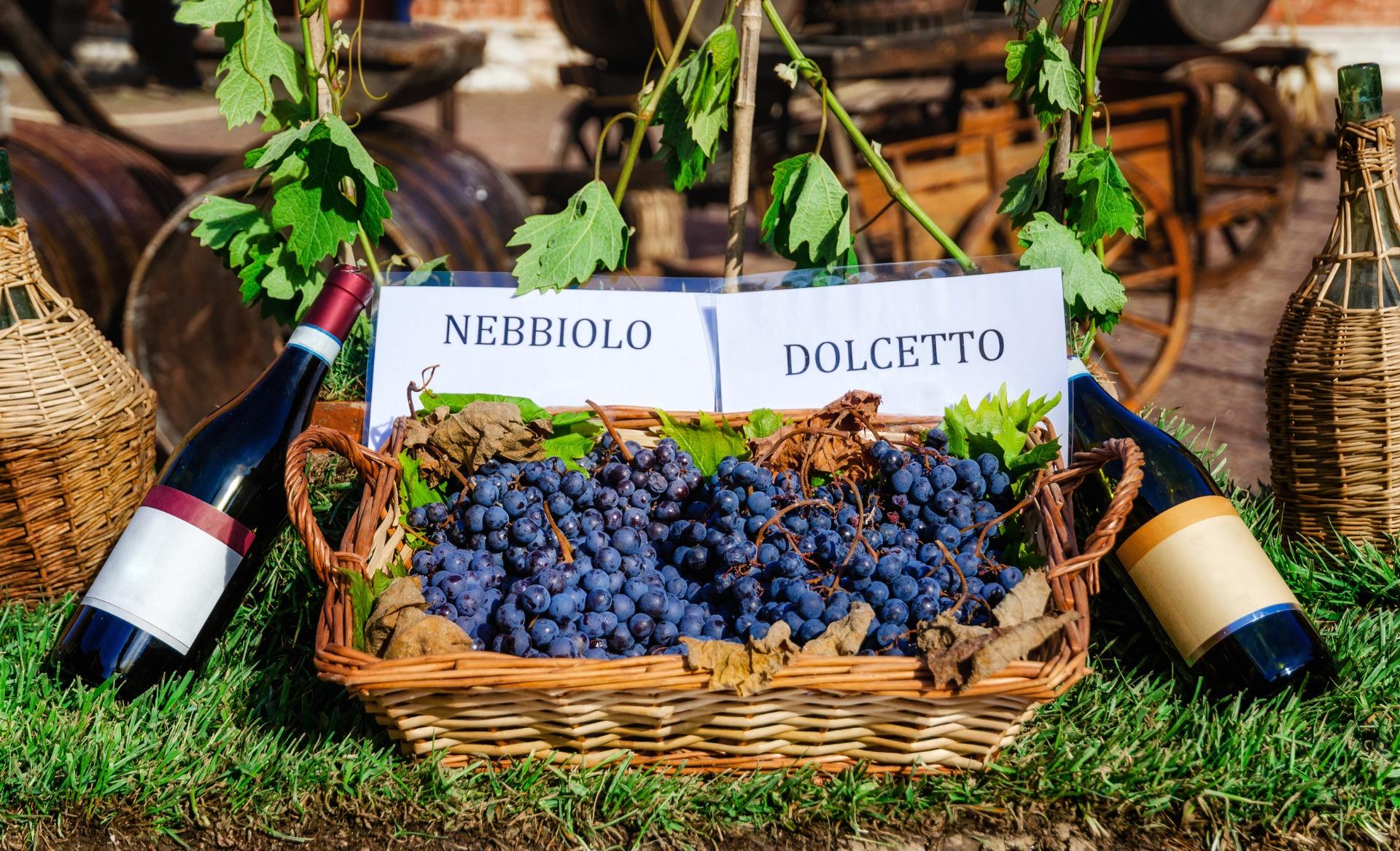 PrikenTik - wijnstreken - Nebbiolo