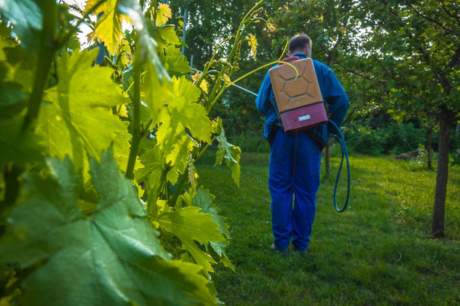 PrikenTik wijnstreken - Bio - wijn