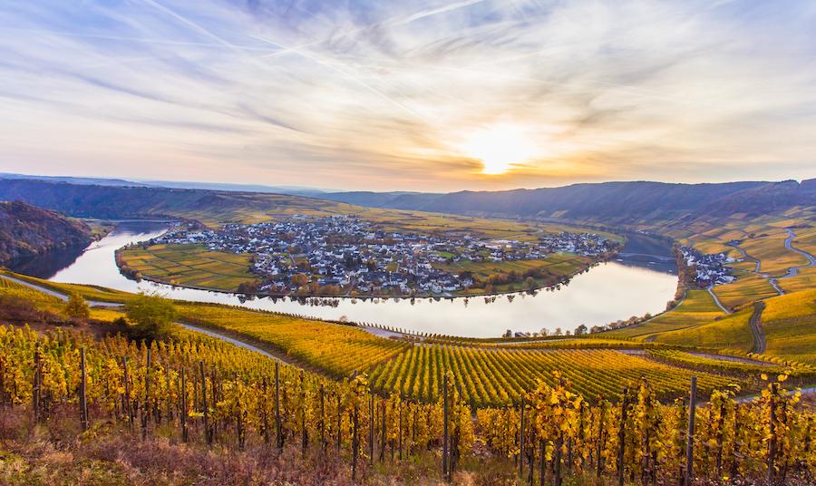 Wijn ABC - Duitse wijnen